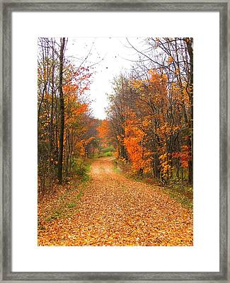 Country Road Framed Print by Judy  Waller