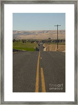 Country Road Framed Print by Juli Scalzi
