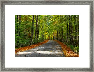 Country Road Framed Print by Larry Braun