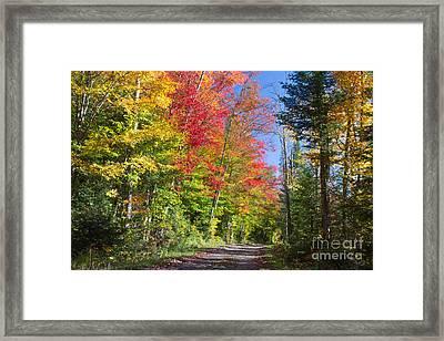 Country Road Ny Framed Print