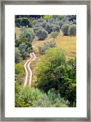 Country Road Of Tuscany Framed Print by David Letts