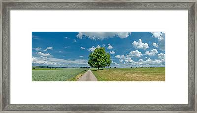 Country Road Passing Through A Field Framed Print by Panoramic Images