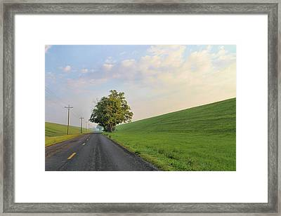 Country Roads Framed Print by Dan Sproul