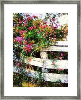 Country Rose On A Fence 3 Framed Print