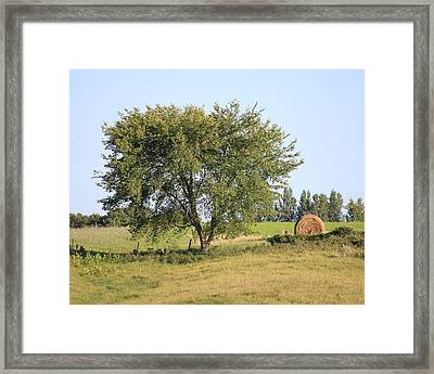 Framed Print featuring the photograph Country Scene by Penny Meyers