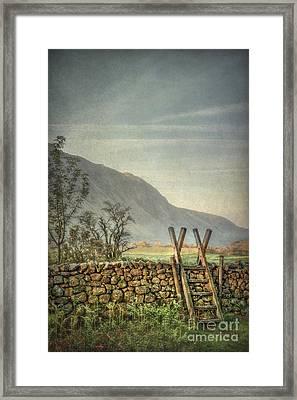 Country Spirit Framed Print by Evelina Kremsdorf