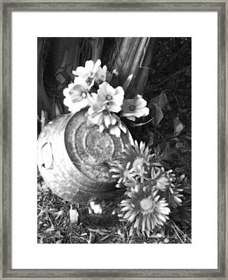 Country Summer - Bw 03 Framed Print by Pamela Critchlow