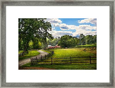 Country - The Pasture  Framed Print by Mike Savad
