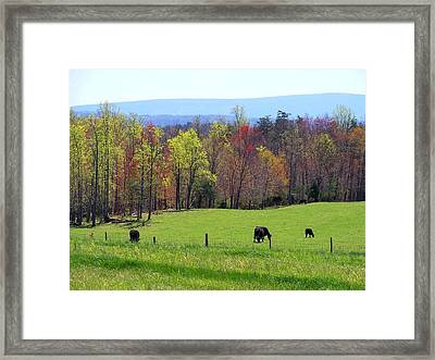 Framed Print featuring the photograph Countryside In Spring by Kathryn Meyer