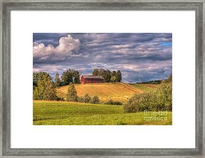 Countryside In Sweden Framed Print by Caroline Pirskanen