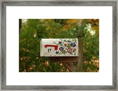 Countryside Mailbox #16 Framed Print