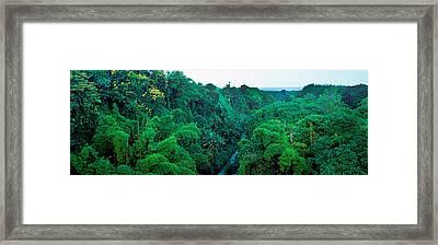 Countryside, Mauritius Island, Mauritius Framed Print