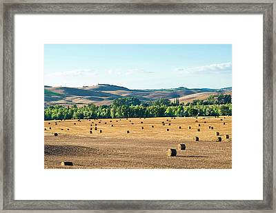 Countryside Near San Qurico D'orcia Framed Print by Nico Tondini