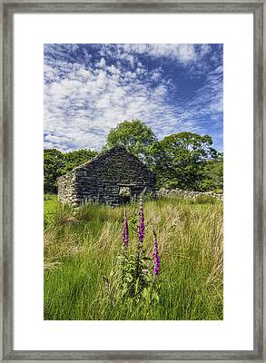 Countryside Ruin Framed Print by Ian Mitchell