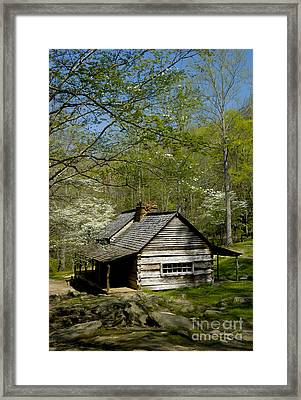 Counttry Cabin Framed Print