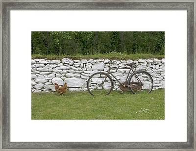 County Kerry Muckross Traditional Farms Framed Print by Tom Norring