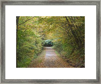 County Path Framed Print