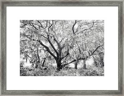 County Road 39 Framed Print