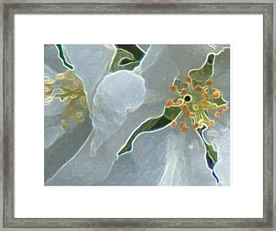 Couple Framed Print by Gerian Dodds