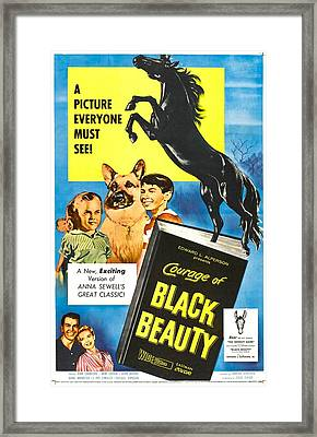 Courage Of Black Beauty, Right Mimi Framed Print by Everett