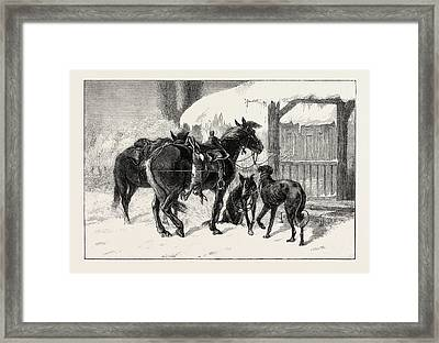Coursing In Poland Two Polish Hunters, From A Painting Framed Print