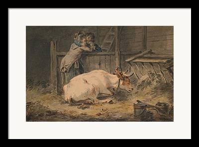 Cowshed Framed Prints