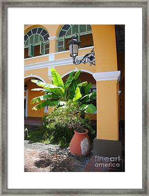 Courtyard Old San Juan Framed Print