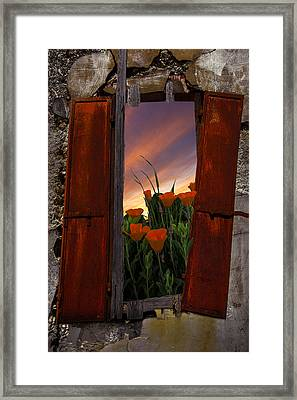 Courtyard Window Framed Print