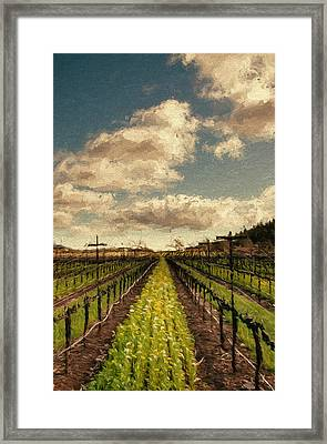 Cover Crop In Rows Framed Print by John K Woodruff