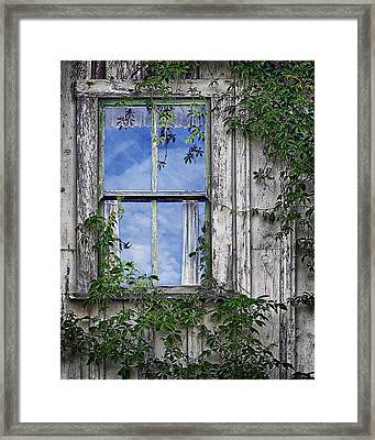 Covered In Vines - Old House Window Framed Print by Nikolyn McDonald