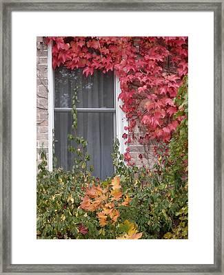 Covered Window Framed Print by Margaret McDermott