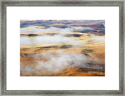 Covering The Gold Framed Print by Mike  Dawson
