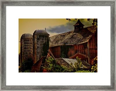 Cow Barn Framed Print