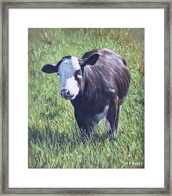 Cow In Grass Framed Print by Martin Davey