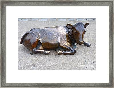 Framed Print featuring the photograph Cow In The City by Menega Sabidussi