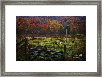 Framed Print featuring the photograph Cow Pasture In Autumn by Debra Fedchin