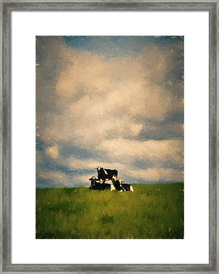 Cow Pyramid Framed Print