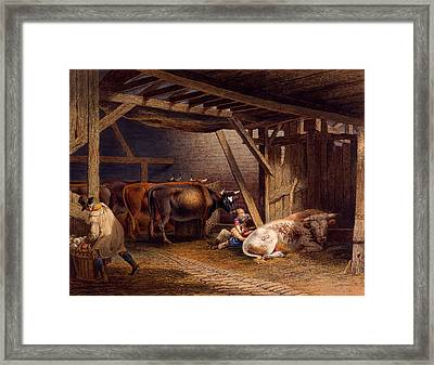 Cow Shed Framed Print by Robert Hills