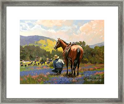 Cowboy And His Cows Framed Print