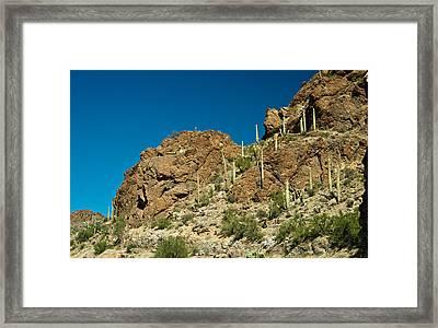 Cowboy Country Arizona 1 Framed Print by Douglas Barnett