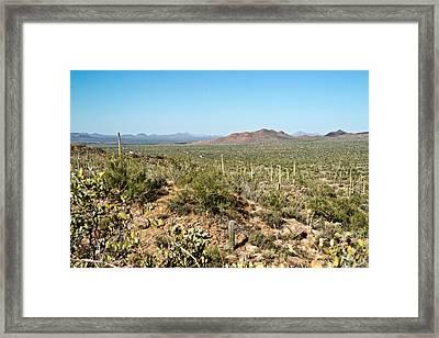 Cowboy Country Arizona 6 Framed Print by Douglas Barnett