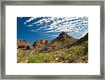 Cowboy Country Arizona 9 Framed Print by Douglas Barnett
