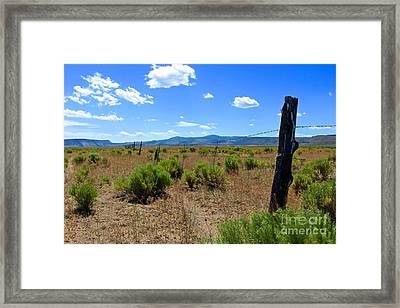 Cowboy Country Framed Print by Tim Rice