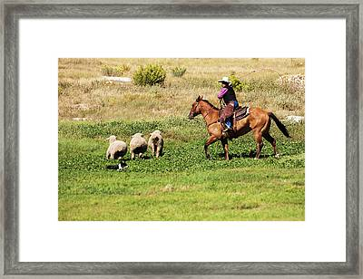 Cowboy On Horse With Border Collie Framed Print