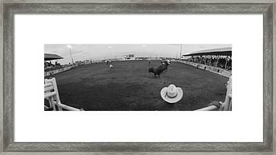 Cowboy Riding Bull At Rodeo Arena Framed Print by Panoramic Images