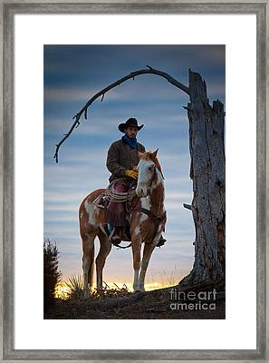 Cowboy Under Tree Framed Print by Inge Johnsson
