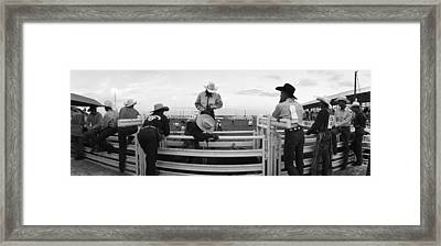 Cowboys At Rodeo, Pecos, Texas, Usa Framed Print