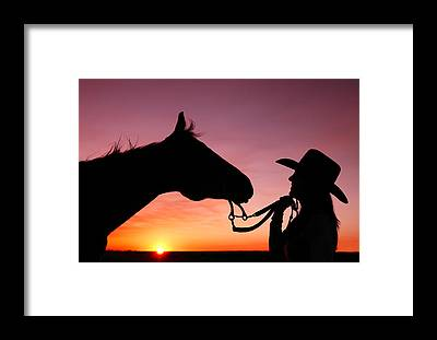 Beautiful Horse Framed Prints