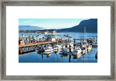 Cowichan Bay Marina  Bc Framed Print by Claudette Bujold-Poirier