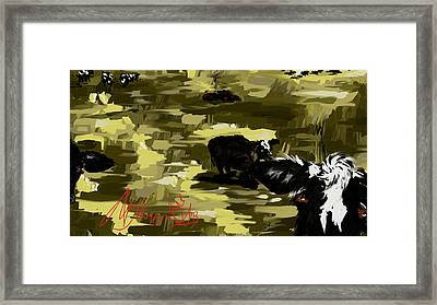 Cows 2 Framed Print by Amanda Johnson